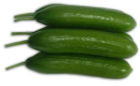 salatalığın faydası nedir , salatalık yararları, hıyarın faydaları