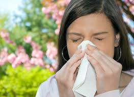 saman nezlesi nedir alerji