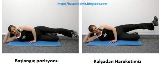 kalça eritme hareketi , kalça egzersizleri